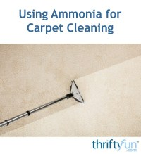 Using Ammonia for Carpet Cleaning | ThriftyFun