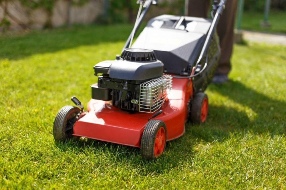 medium resolution of red lawn mower on fresh cut grass