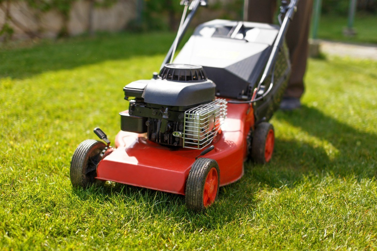 hight resolution of red lawn mower on fresh cut grass