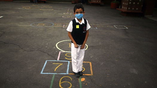 Judging the WHOs Reaction to the H1N1 (Swine Flu) Threat