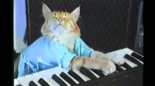 Play Him Off, Keyboard Cat