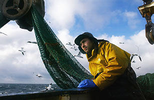 Can the Worlds Fisheries Survive Their Appetite?