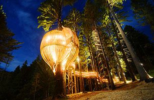 Yellow Treehouse Outer Auckland New Zealand  Top 10
