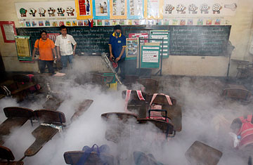 Dengue Fever Cases Reach Record Highs Across Asia  TIME