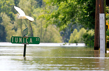 How the Floods May Restore Louisianas Wetlands  TIME