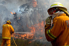 Australian Wildfires Feared to Fuse Into a 'Mega-Fire'