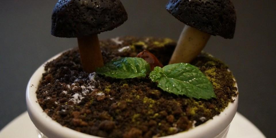 【台中】惹咖啡(米契爾先生)-惹火+菇菇盆栽--踢小米食記