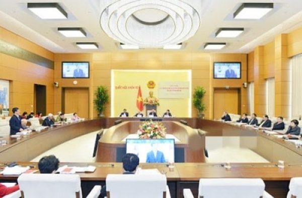 Đối nội là gì? Những chính sách đối nội hiện nay ở Việt Nam - Ảnh 2