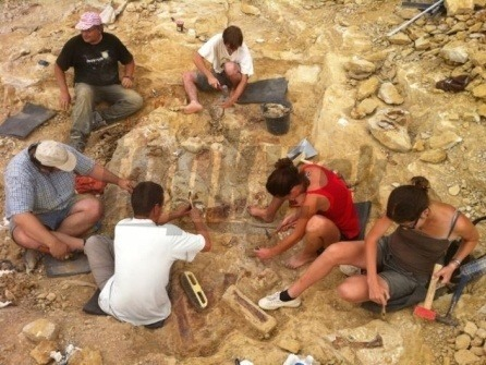 Atsinganosaurus velauciensis excavation