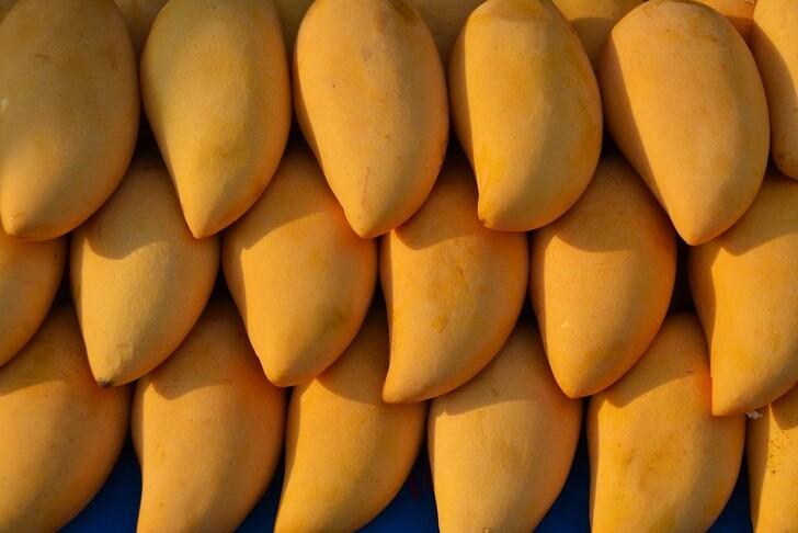 Dock US Mango può