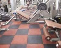 Gym Flooring - Gym Flooring Manufacturers, Dealers & Exporters