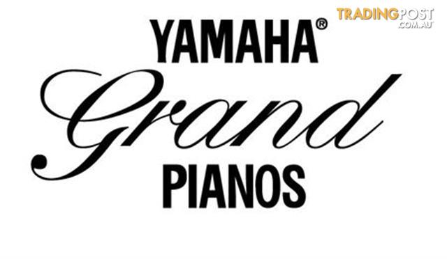Yamaha-C3-Grand-Piano-CX-Series