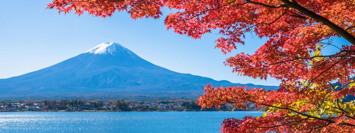 Japan Fall Colors Wallpaper 秋遊就到河口湖 在富士山旁乘坐加拿大獨木舟暢遊河口湖!