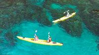 圧倒的な大自然旅 隠岐諸島