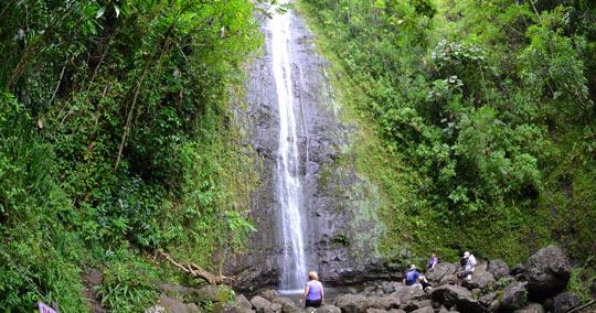 マノアの滝(マノア・フォールズ・トレイル)