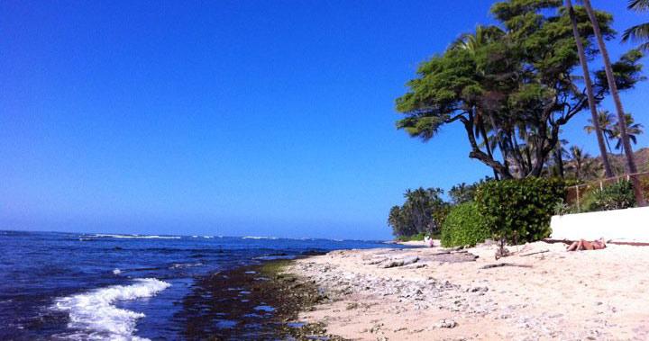 シークレットビーチ(ブラックポイント)