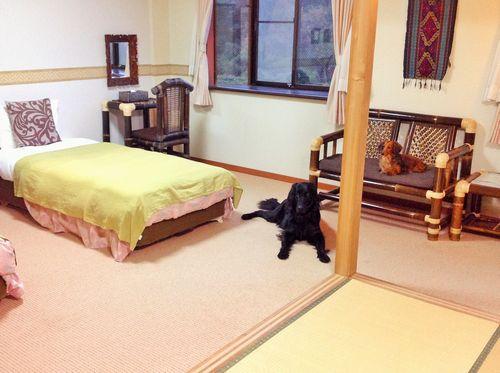 海宿 太陽人/客室