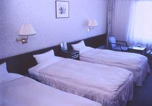 富良野リゾートホテル エーデルヴェルメ/客室
