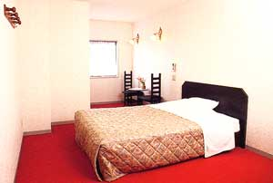 ビジネスホテル あべ川/客室