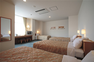 HOTEL AZ 宮崎高鍋店/客室