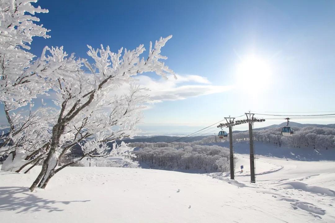 今年冬天快閃仙臺滑雪,夏油高原滑雪場我來了!@LAWA (57592) - 旅行酒吧