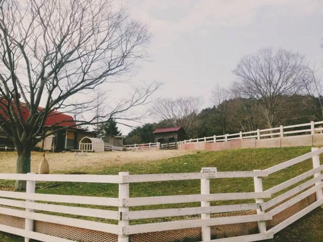 日本神戶六甲山牧場一日遊@京阪神 好時光 (20577) - 旅行酒吧
