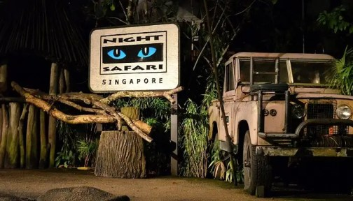 Night Safari In Singapore: An Electrifying Experience!