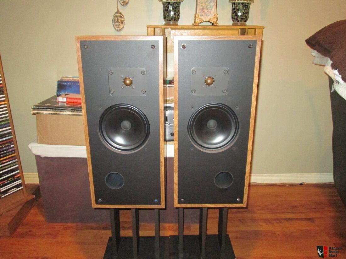 Rare Vintage Rega Model 3 Canadian 2way Speakers Photo