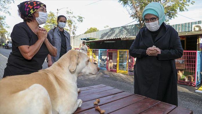 Emine Erdoğan 'Leblebi' isimli engelli köpeği sahiplendi
