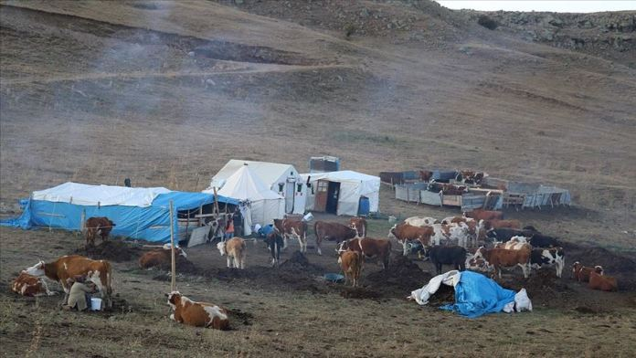 Doğu Anadolu'daki göçerlerin dönüş yolculuğu sürüyor