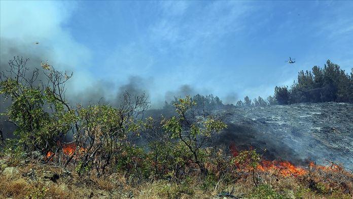 Kahramanmaraş'taki orman yangını sürüyor