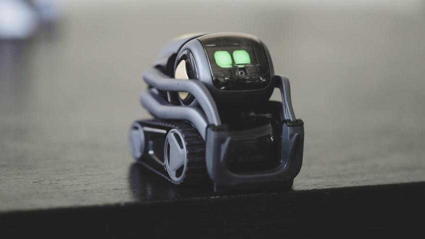 Vector is a robot for grownups