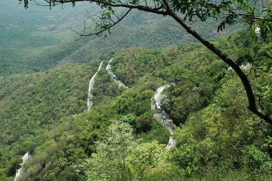 திருப்பதி மலை