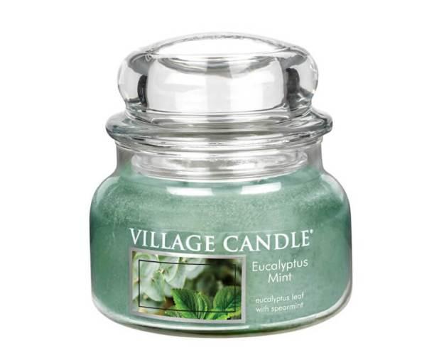 Village Candle Vonná svíčka ve skle Eukalyptus a máta (Eucalyptus Mint) 269 g (kVIL0037) od www.kosmetika.cz