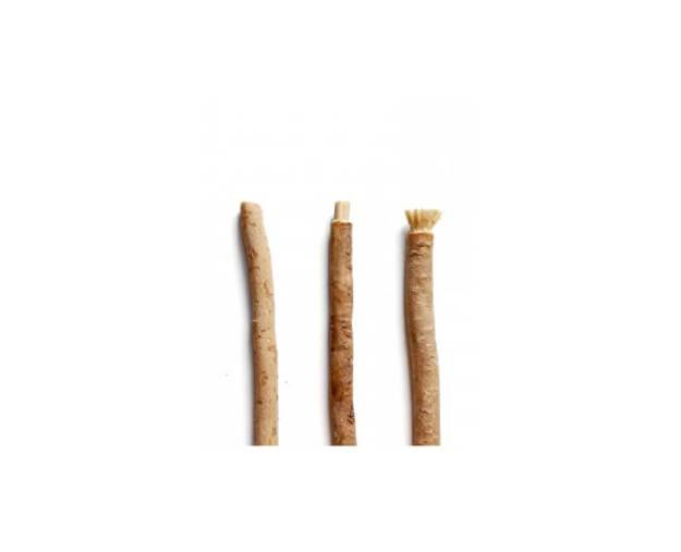 Přírodní zubní kartáček Miswak (z54115) od www.prozdravi.cz