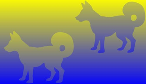 yellow-blue-dogs