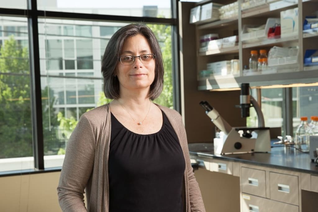 Colleen Delaney of the Fred Hutchinson Cancer Research Center in Seattle helped create the cord-blood technique. (Courtesy of Colleen Delaney )
