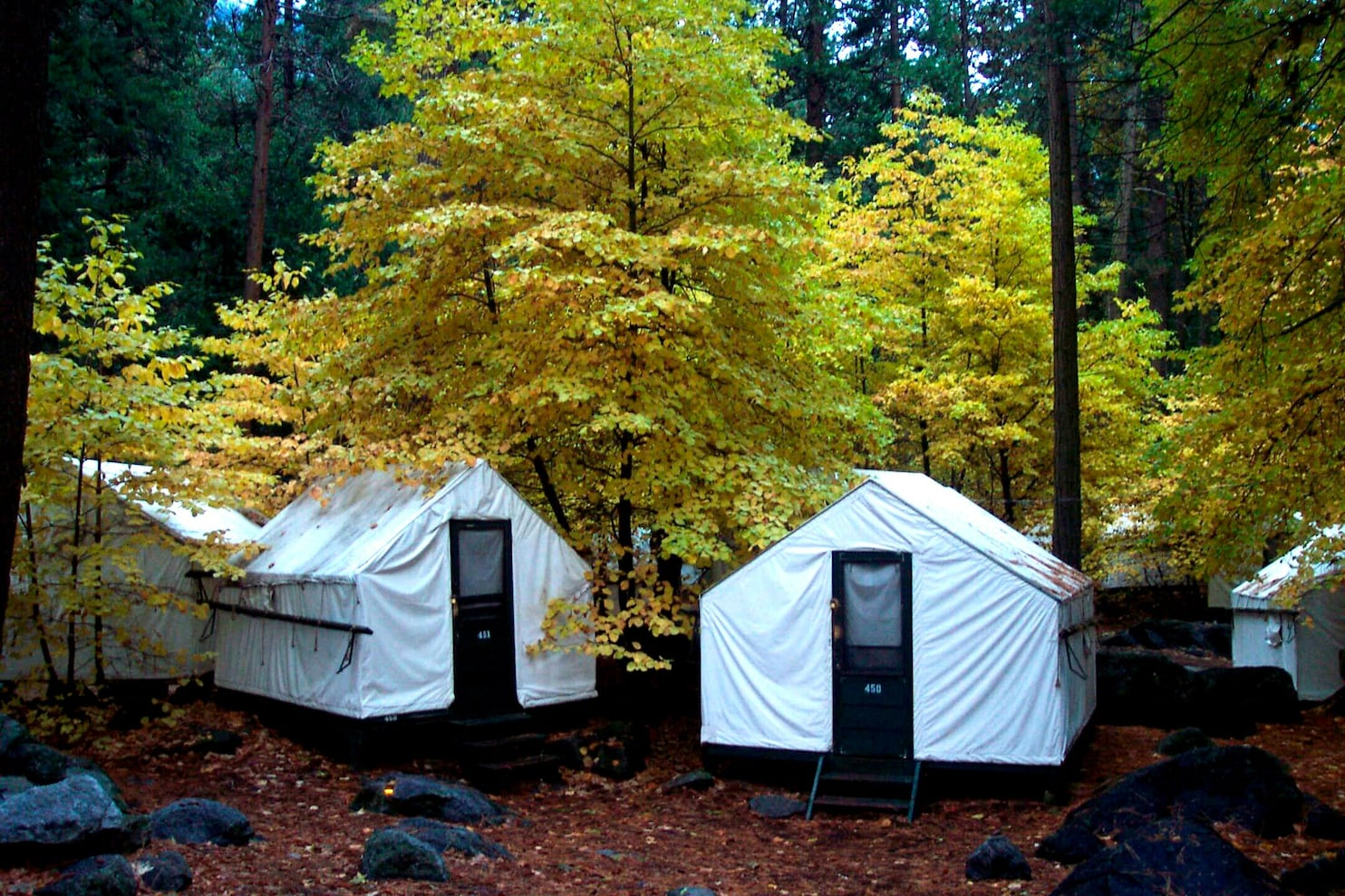 Yosemite tent cabins are locked as hantavirus source is