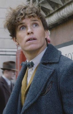 Les Crimes De Grindelwald Streaming : crimes, grindelwald, streaming, YouWatch]], Animaux, Fantastiques, Crimes, Grindelwald, Streaming, Galileofi, Wattpad
