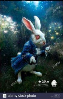 Lapin D'alice Au Pays Des Merveilles : lapin, d'alice, merveilles, Instagram, Lapin, Alice, Merveilles, [Abandonné], Eflaan, Wattpad