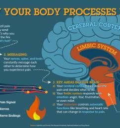 body diagram pain scale [ 3830 x 2336 Pixel ]