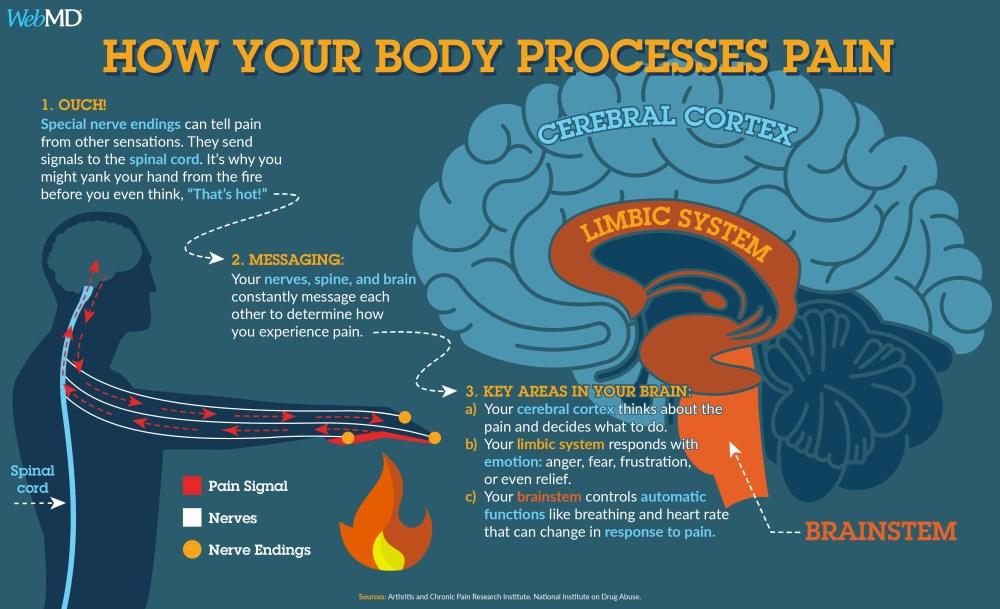medium resolution of body diagram pain scale