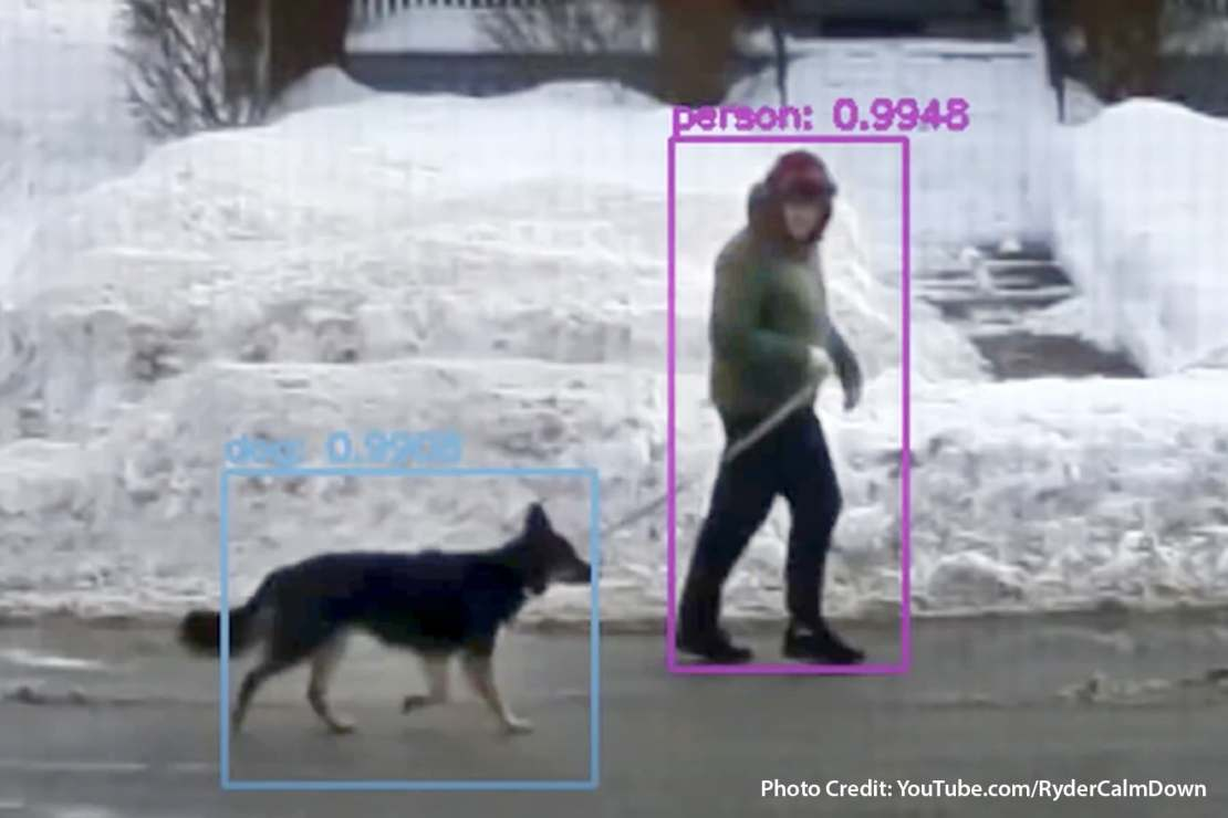 photo of dog detector