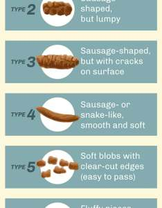 Poop chart also bristol stool types of shapes textures  consistency rh webmd