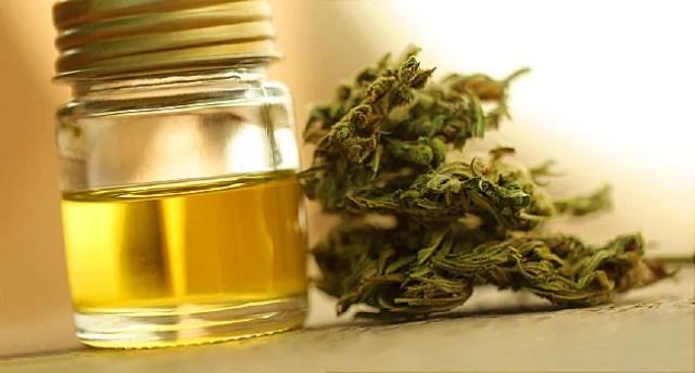 cannabidoil et marijuana
