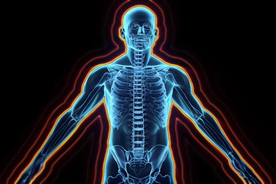 photo illustration of human body nervous system