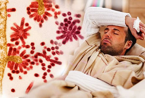 Do I Have The Flu? Flu Symptoms, Treatments, and Prevention.