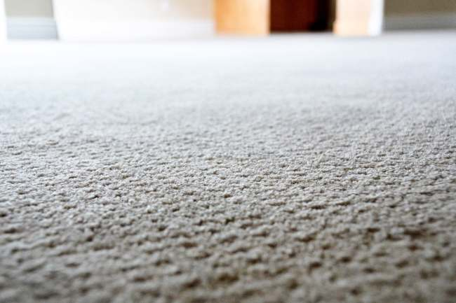 photo of carpet