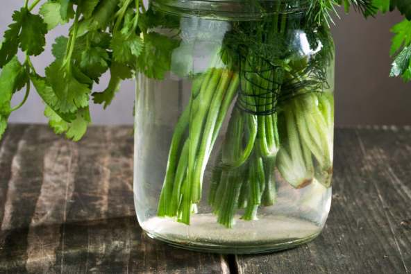 photo of dill and parsley in jar of water