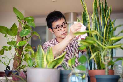 photo of man caring for plants